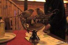 Pokal Škrjančki 2015